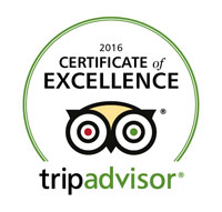 tripadvisor-excellence-award-badge